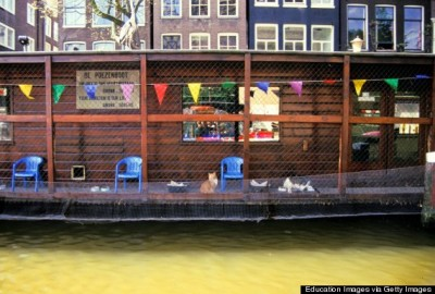 Netherlands, Amsterdam, Poezenboot, Famous Boathouse For Cats. (Photo by Education Images/UIG via Getty Images)